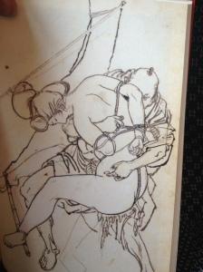 seiu inlaga sketch