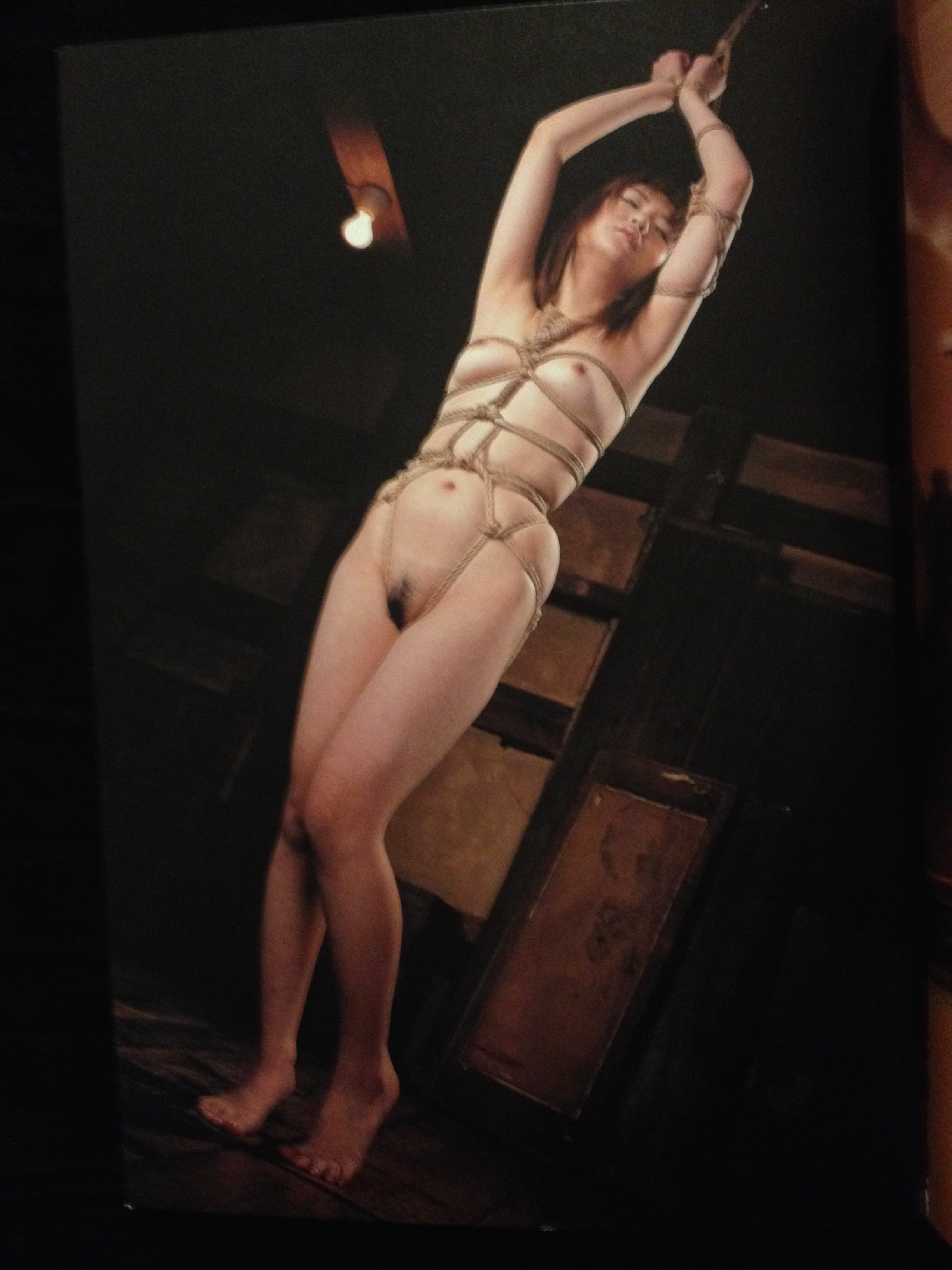 history of bondage photos in japan
