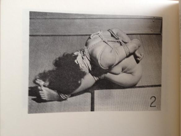 bild 2-3