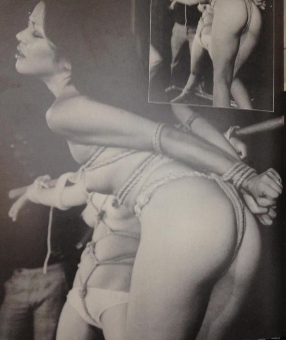 bild 2.JPG